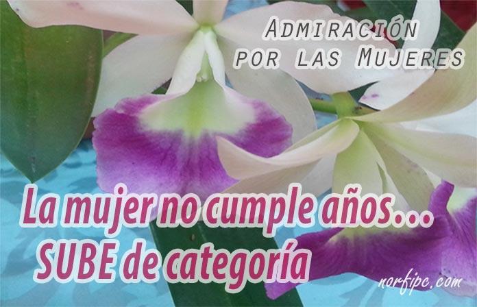 Agencias Matrimoniales Opiniones 631327